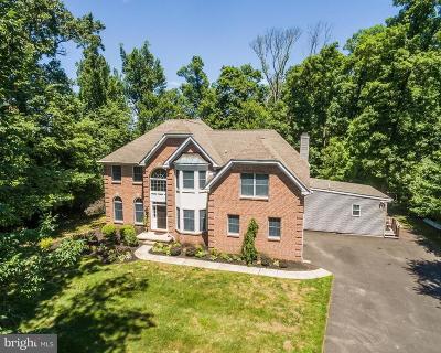 Doylestown Single Family Home For Sale: 3795 S Mallard Lane