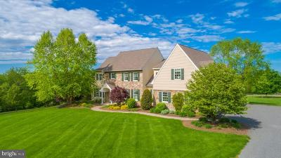 Bucks County Single Family Home For Sale: 141 School Drive