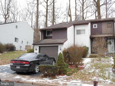 Bucks County Single Family Home For Sale: 614 Valley Stream Circle