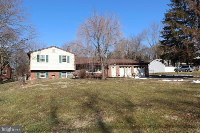Bucks County Single Family Home For Sale: 594 Hollow Horn Road