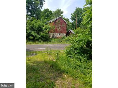 Bucks County Commercial For Sale: Route 313