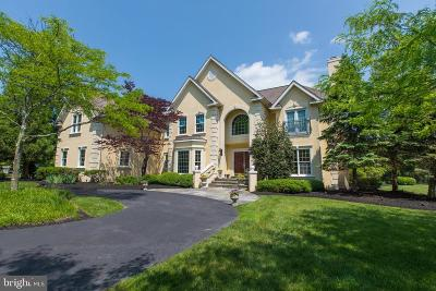 Doylestown Single Family Home For Sale: 5709 Valley Stream Drive