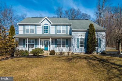 Bucks County Single Family Home For Sale: 5420 Nicholas Court