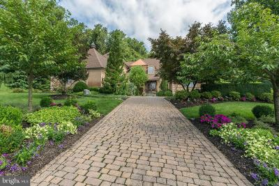 Doylestown Single Family Home For Sale: 407 Matisse Court