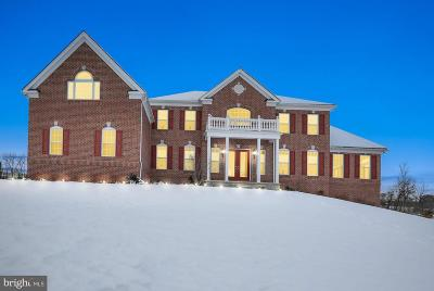 Bucks County Single Family Home For Sale: 4024 Hillcrest Drive