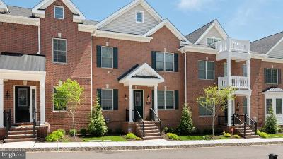 Bucks County Townhouse For Sale: 54 Creekview Lane