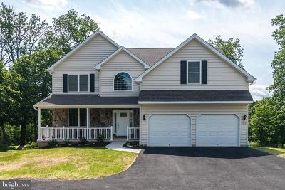 Bucks County Single Family Home For Sale: 1229 N Ridge Road