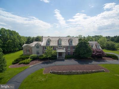 Solebury, New Hope Single Family Home For Sale: 858 Tower View Circle