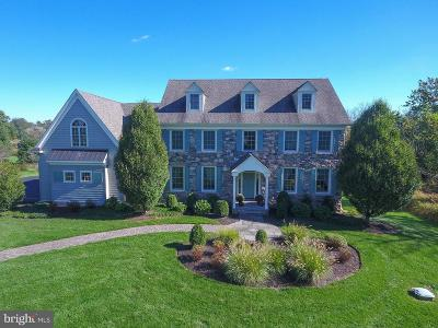Bucks County Single Family Home For Sale: 4599 New Hope Road