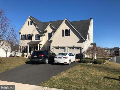 Huntingdon Valley Single Family Home For Sale: 61 Cameron Road