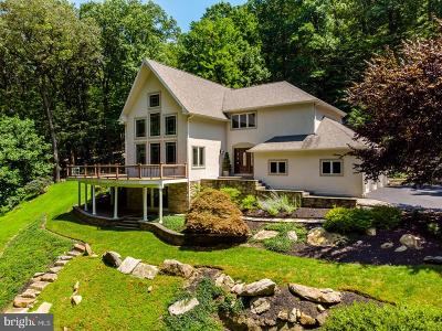 Bucks County Single Family Home For Sale: 4757 Upper Mountain Road