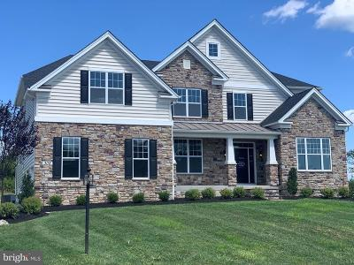 Bucks County Single Family Home For Sale: 305 Rowland Ln