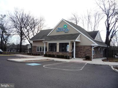 Bucks County Commercial For Sale: 3617 Route 202
