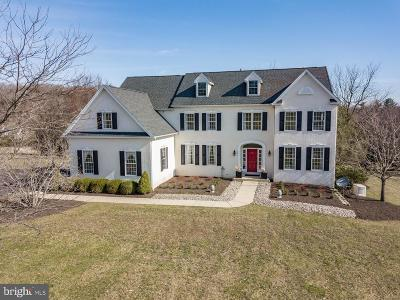Bucks County Single Family Home For Sale: 12 Erwinna Valley Way