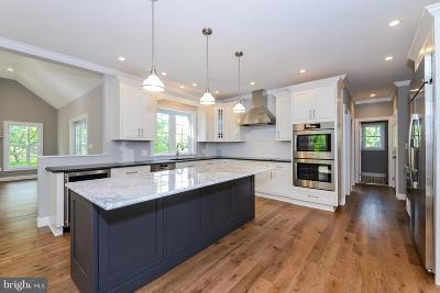 Bucks County Single Family Home For Sale: 4236 Applebutter Rd