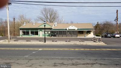 Bucks County Commercial For Sale: 215 E Butler Avenue