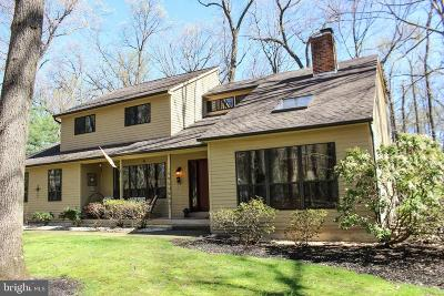 Doylestown Single Family Home For Sale: 2899 Snake Hill Road