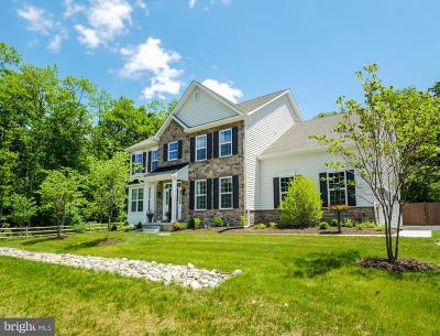 Solebury, New Hope Single Family Home For Sale: 6466 Middleton Lane