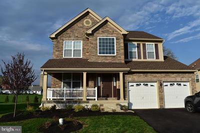 Bucks County Single Family Home For Sale: 1025 Landis Rush Drive