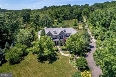 Solebury, New Hope Single Family Home For Sale: 5945 Stoney Hill Road
