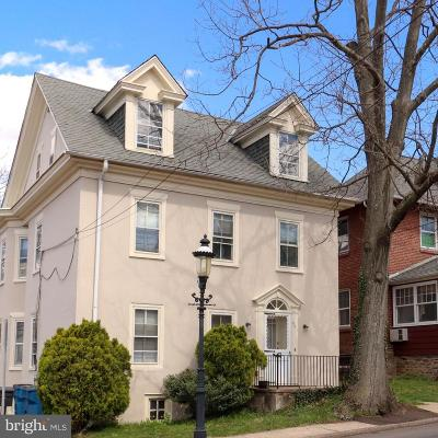 Bucks County Commercial For Sale: 201 N Broad Street