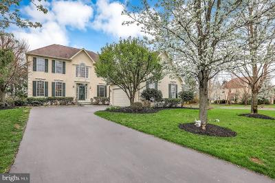 Solebury, New Hope Single Family Home For Sale: 2 Lenape Drive