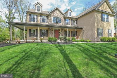 Bucks County Single Family Home For Sale: 217 Pine Valley Road