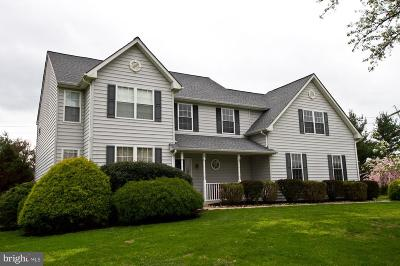 Solebury, New Hope Single Family Home For Sale: 23 Towpath Way