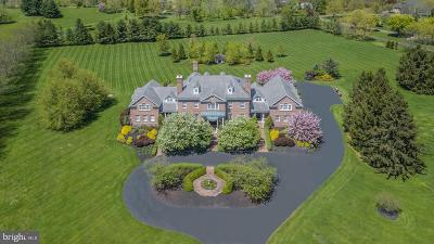 Solebury, New Hope Single Family Home For Sale: 5981 Atkinson Road