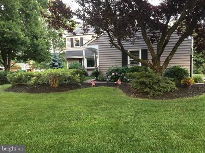 Bucks County Single Family Home For Sale: 449 Fairman Lane