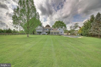 Bucks County Single Family Home For Sale: 395 Hollow Horn Road