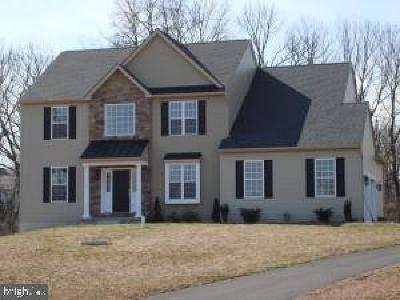 Bucks County Single Family Home For Sale: Lot 003 Route 313