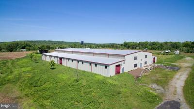 Bucks County Commercial For Sale: 4506 New Hope Road
