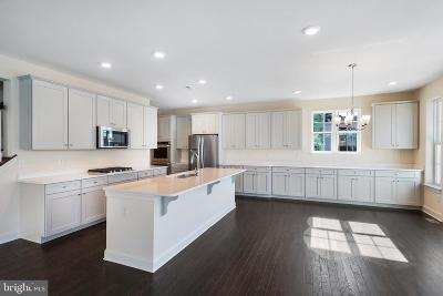Bucks County Single Family Home For Sale: 307 Connor Lane