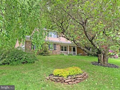 Doylestown Single Family Home For Sale: 4264 S Southview Lane