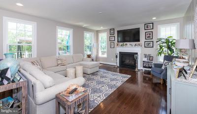 Bucks County Single Family Home For Sale: 1063 School Lane