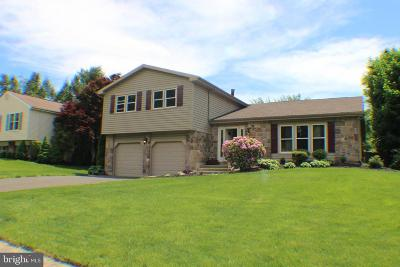 Bucks County Single Family Home For Sale: 4 Valley Court
