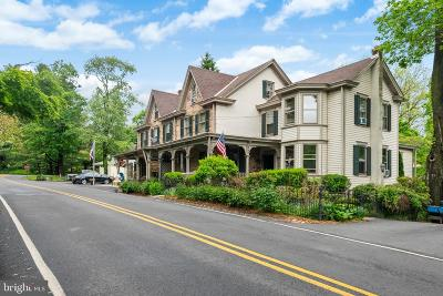 Solebury, New Hope Commercial For Sale: 2996 N Sugan Road