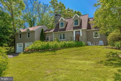 Bucks County Single Family Home For Sale: 6822 Point Pleasant Pike