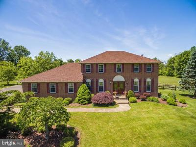 Bucks County Single Family Home For Sale: 6617 Blueberry Lane
