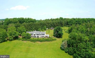 Bucks County Single Family Home For Sale: 1017 Deer Run Road