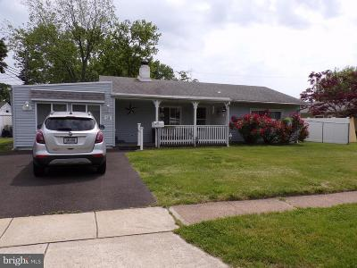 Levittown Single Family Home For Sale: 38 Swan Lane