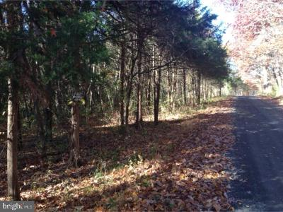 Bucks County Residential Lots & Land For Sale: 26 Tammany Road