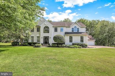 Bucks County Single Family Home For Sale: 305 W Sandy Ridge Road