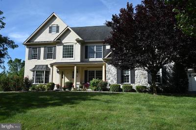 Warrington Single Family Home For Sale: 802 Princeton Drive