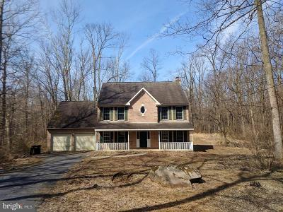 Bucks County Single Family Home For Sale: 1131 Old School Road