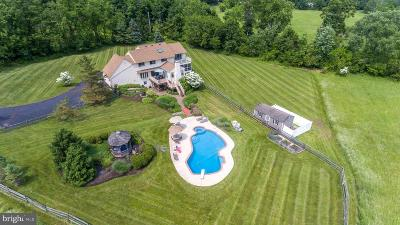 Doylestown Single Family Home For Sale: 99 Pine Run Road