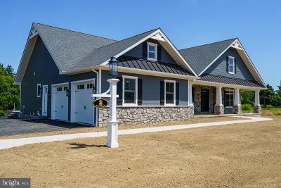 Bucks County Single Family Home For Sale: 490 Schultz Road