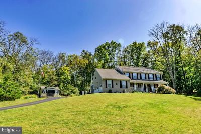 New Hope Single Family Home For Sale: 6954 Point Pleasant Pike