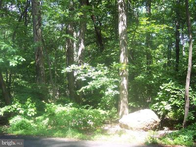 Bucks County Residential Lots & Land For Sale: 7519 Easton Road